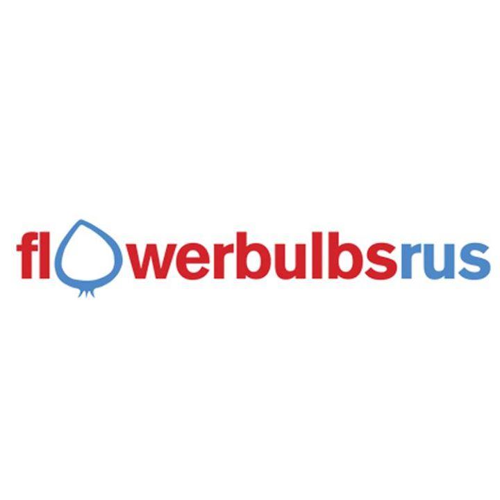 Flower Bulbs R Us