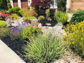 Livermore Landscaping Pros