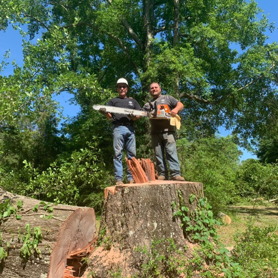 Hug'em and Cut'em Tree Service
