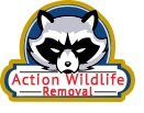 Action Wildlife Removal