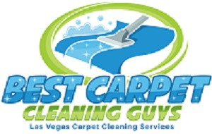 Best Carpet Cleaning Guys