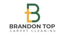 Brandon Top Carpet Cleaning