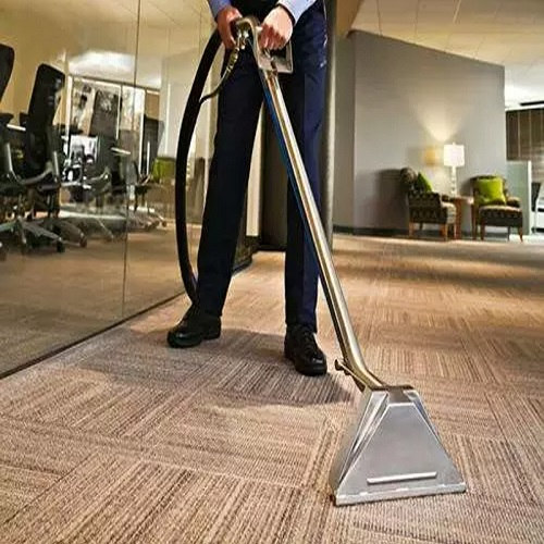 Carpet Cleaning Findon