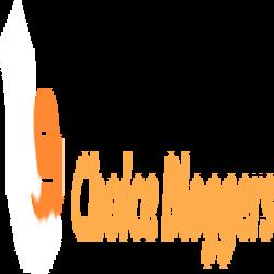 choiceblogger
