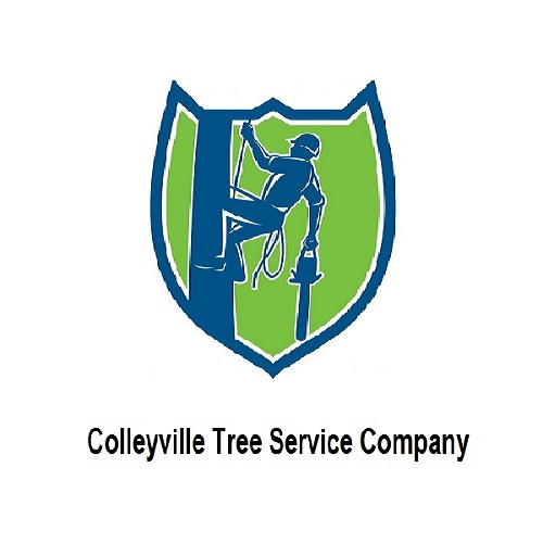Colleyville Tree Service Company