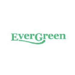 Evergreen Nebulisers Ltd