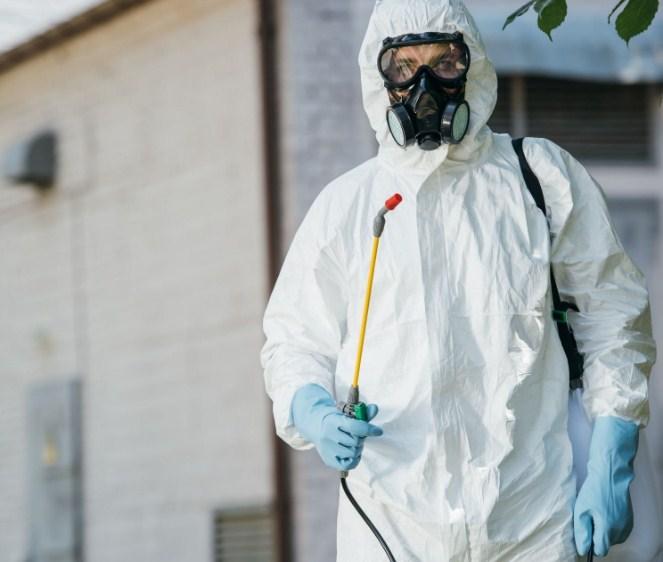 Pest Control Experts of Mesa