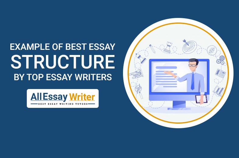 Essay Writer