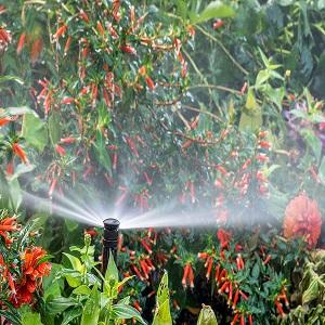 Porter Sprinklers