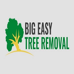 Big Easy Tree Removal