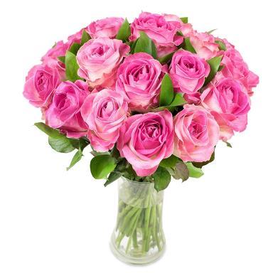 Flowers Harringay