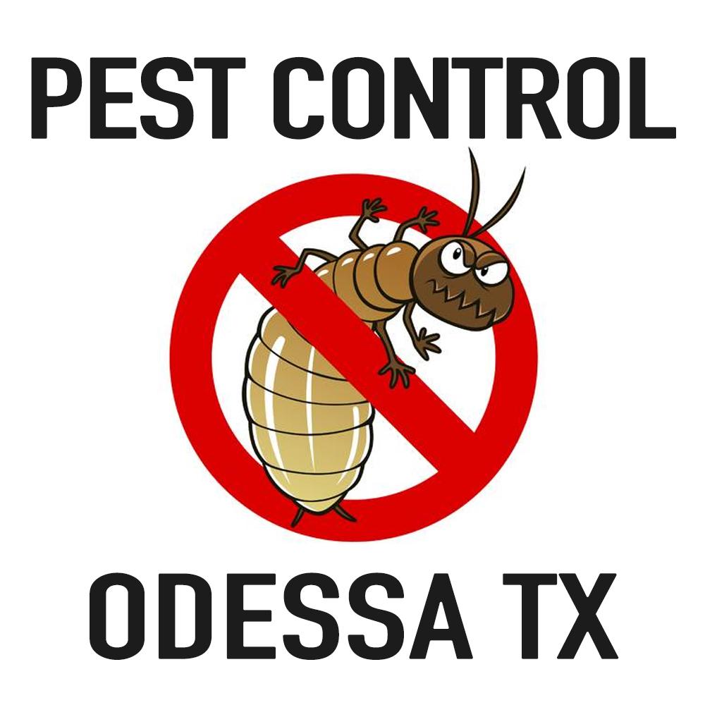 Pest Control Odessa