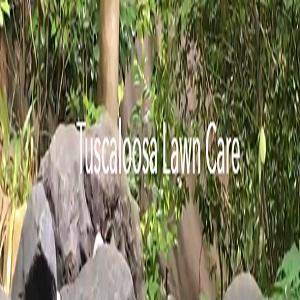 Tuscaloosa Lawn Care Pros