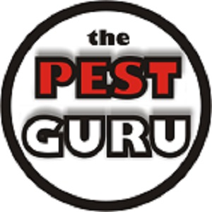 The Pest Guru Tyler Tx