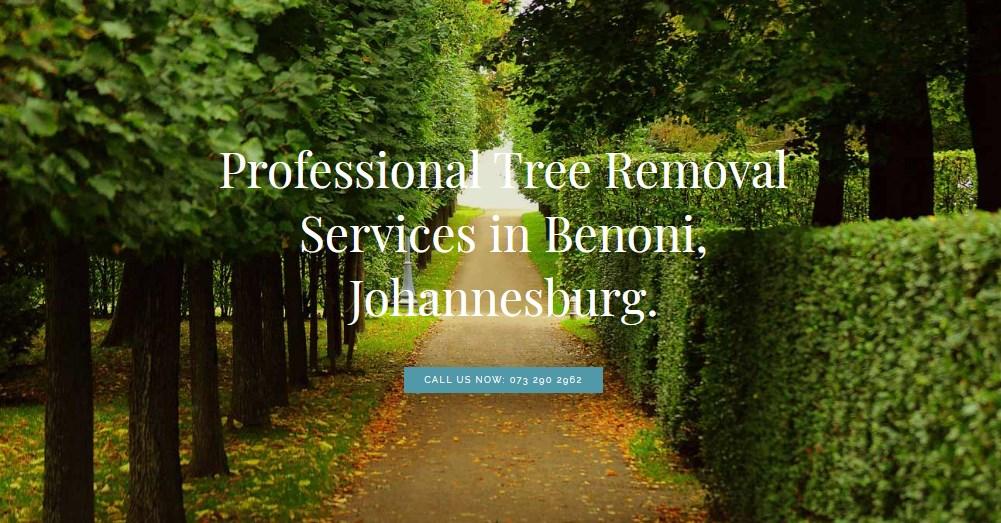 Euphonic Tree Felling Benoni