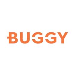 Buggy TLC Rentals