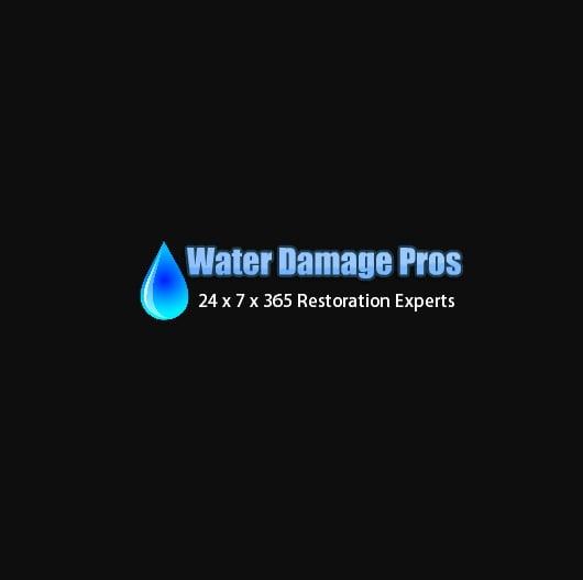 Water Damage Pros of Columbus Ohio