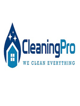 cleaningprow@gmail.com