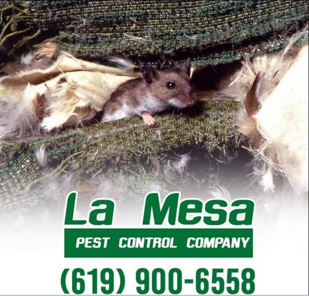 La Mesa Pest Control Company