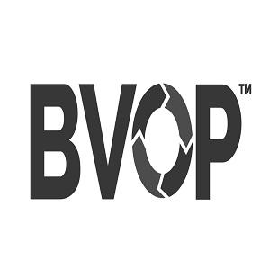 Business Value-Oriented Principles Ltd