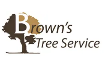 Fort Worth Tree Service Experts