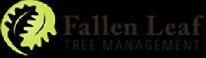 Fallen Leaf Tree Management