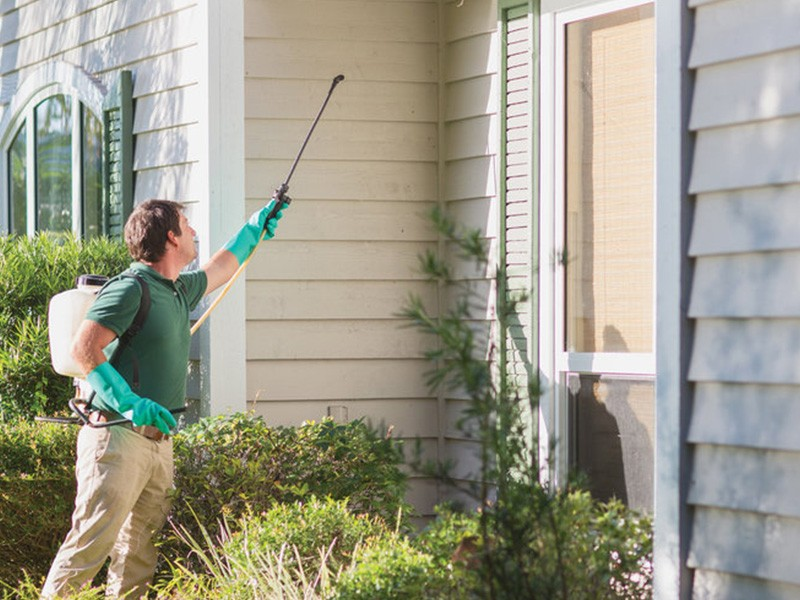 Affordable Pest Control Columbia SC