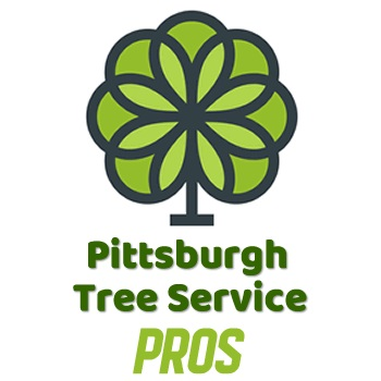 Pittsburgh Tree Service Pros