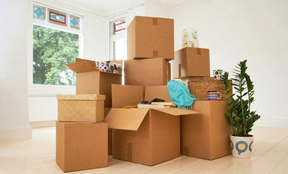 Pro Interstate Removalists Adelaide
