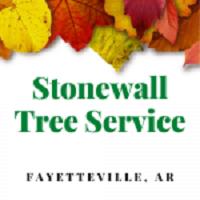 Stonewall Tree Service Fayetteville